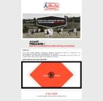 Newsletter Elle et Vire Pro site 2013